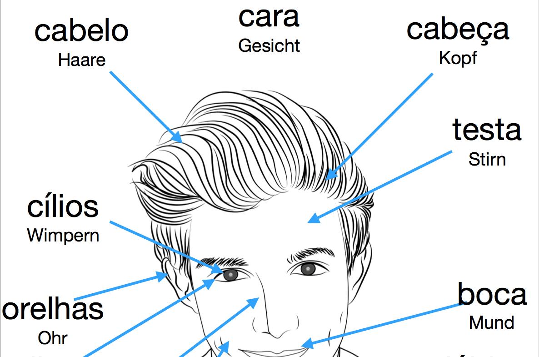 Portugiesisch Lernkarten